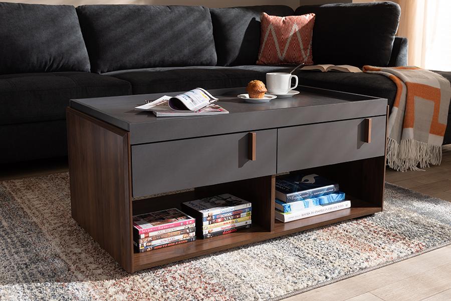 Rikke Gray Walnut Wood 2 Drawer Coffee Table | Baxton Studio