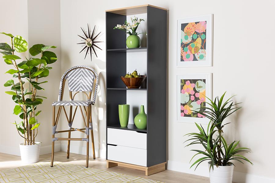 Reed Multicolor 2 Drawer Wood Living Room Bookshelf | Baxton Studio